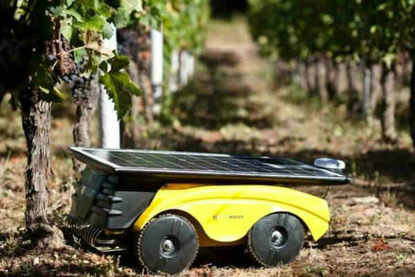Precision Viticulture against pesticides